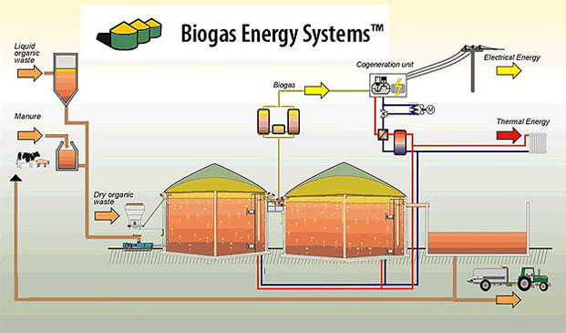 how to make biogas plant model